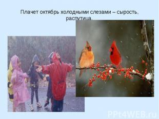 Плачет октябрь холодными слезами – сырость, распутица.