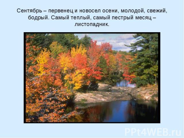 Сентябрь – первенец и новосел осени, молодой, свежий, бодрый. Самый теплый, самый пестрый месяц – листопадник.