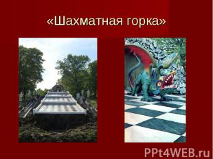 «Шахматная горка»