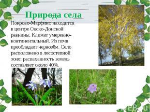 Природа села Покрово-Марфино находится в центре Окско-Донской равнины. Климат ум