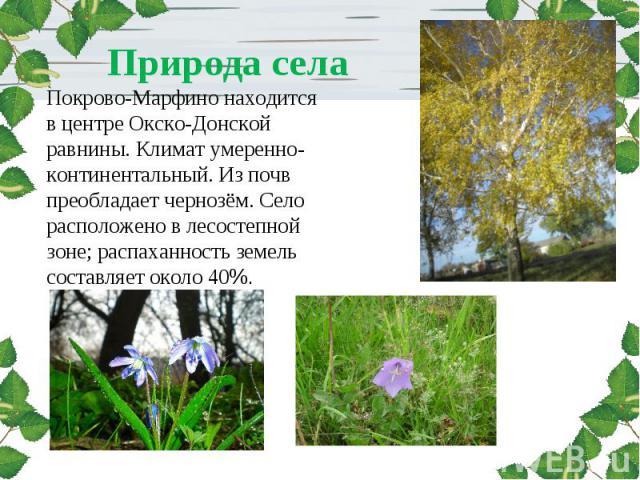 Природа села Покрово-Марфино находится в центре Окско-Донской равнины. Климат умеренно-континентальный. Из почв преобладает чернозём. Село расположено в лесостепной зоне; распаханность земель составляет около 40%.