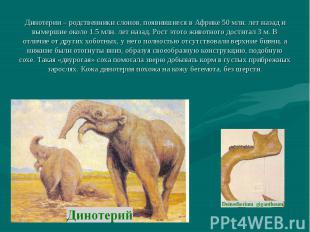 Динотерии – родственники слонов, появившиеся в Африке 50 млн. лет назад и вымерш