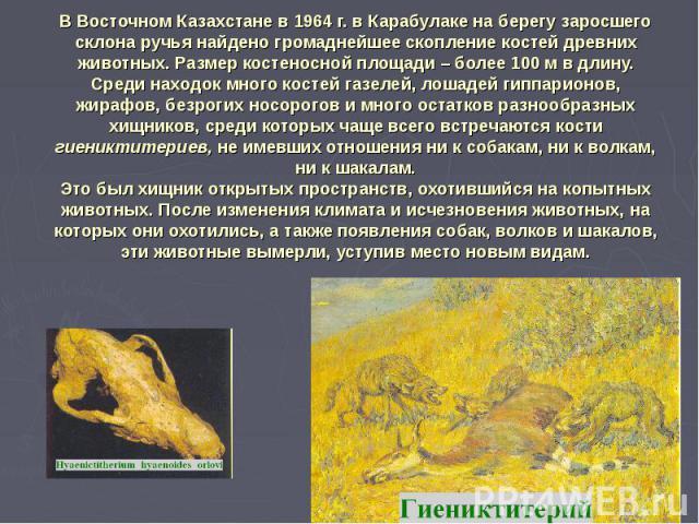 В Восточном Казахстане в 1964 г. в Карабулаке на берегу заросшего склона ручья найдено громаднейшее скопление костей древних животных. Размер костеносной площади – более 100 м в длину. Среди находок много костей газелей, лошадей гиппарионов, жирафов…