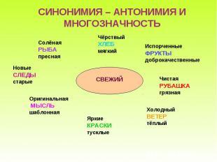 СИНОНИМИЯ – АНТОНИМИЯ И МНОГОЗНАЧНОСТЬ