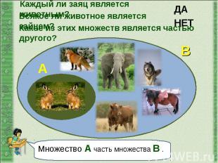 Каждый ли заяц является животным? Всякое ли животное является зайцем?Какое из эт