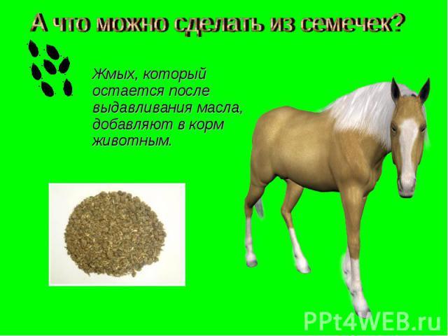 А что можно сделать из семечек? Жмых, который остается после выдавливания масла, добавляют в корм животным.