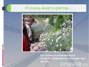 И очень много цветов… Вот почему в июне месяце в Следово традиционно проходит ба