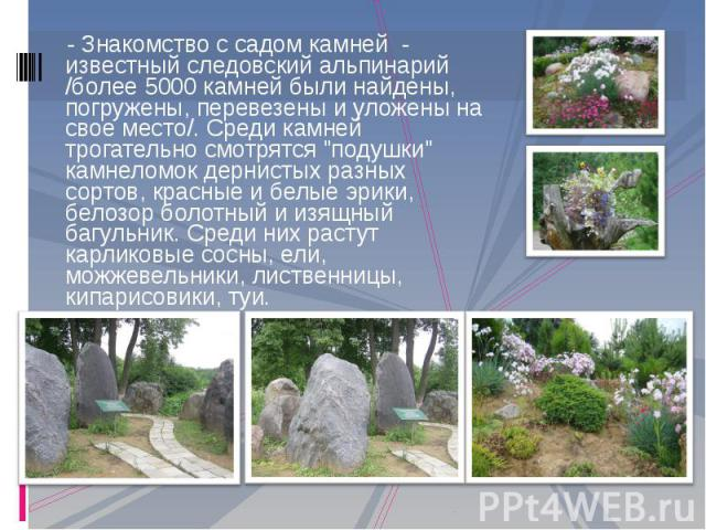 - Знакомство с садом камней - известный следовский альпинарий /более 5000 камней были найдены, погружены, перевезены и уложены на свое место/. Среди камней трогательно смотрятся