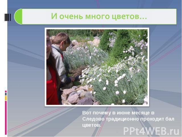 И очень много цветов… Вот почему в июне месяце в Следово традиционно проходит бал цветов.
