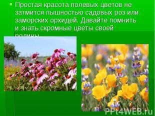 Простая красота полевых цветов не затмится пышностью садовых роз или заморских о