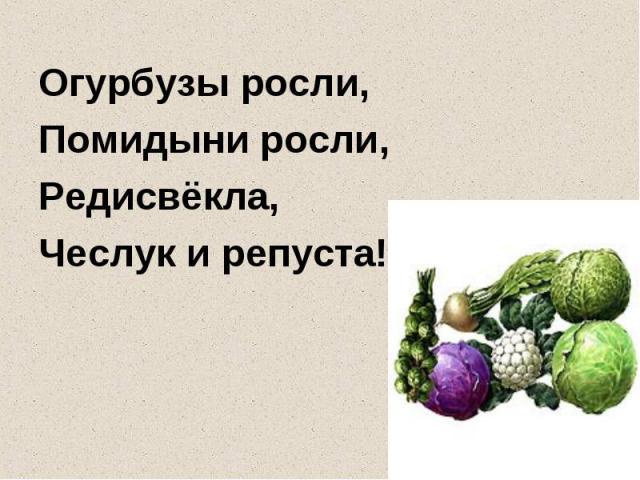 Огурбузы росли,Помидыни росли,Редисвёкла,Чеслук и репуста!