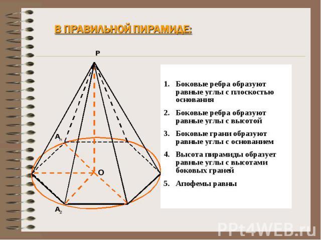 В правильной пирамиде: Боковые ребра образуют равные углы с плоскостью основанияБоковые ребра образуют равные углы с высотойБоковые грани образуют равные углы с основаниемВысота пирамиды образует равные углы с высотами боковых гранейАпофемы равны