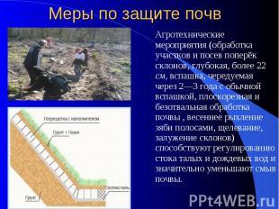 Меры по защите почв Агротехнические мероприятия (обработка участков и посев попе