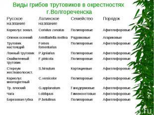 Виды грибов трутовиков в окрестностях г.Волгореченска