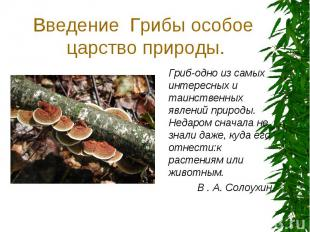 Введение Грибы особое царство природы. Гриб-одно из самых интересных и таинствен