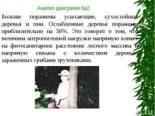 Анализ диаграмм №2 Больше поражены усыхающие, сухостойные деревья и пни. Ослабле