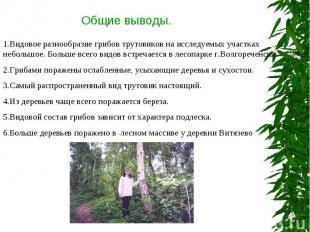 Общие выводы. 1.Видовое разнообразие грибов трутовиков на исследуемых участках н