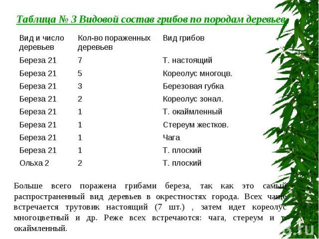 Таблица № 3 Видовой состав грибов по породам деревьев Больше всего поражена грибами береза, так как это самый распространенный вид деревьев в окрестностях города. Всех чаще встречается трутовик настоящий (7 шт.) , затем идет кореолус многоцветный и …
