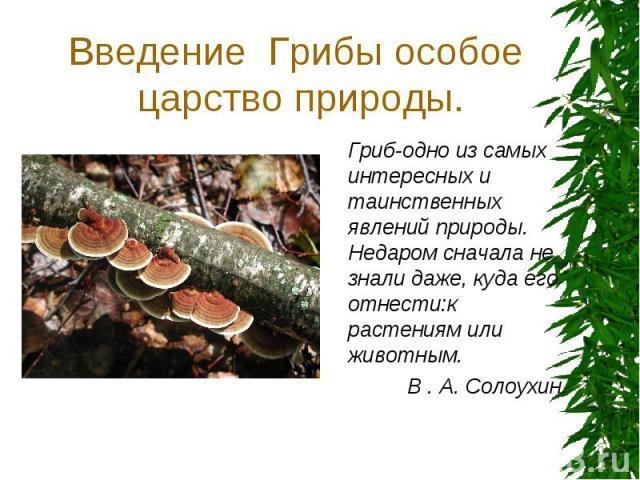 Введение Грибы особое царство природы. Гриб-одно из самых интересных и таинственных явлений природы. Недаром сначала не знали даже, куда его отнести:к растениям или животным. В . А. Солоухин.