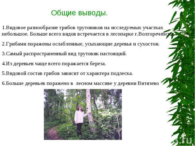 Общие выводы. 1.Видовое разнообразие грибов трутовиков на исследуемых участках небольшое. Больше всего видов встречается в лесопарке г.Волгореченска2.Грибами поражены ослабленные, усыхающие деревья и сухостои.3.Самый распространенный вид трутовик на…