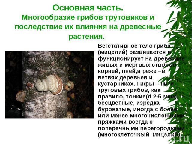Основная часть.Многообразие грибов трутовиков и последствие их влияния на древесные растения. Вегетативное тело гриба (мицелий) развивается и функционирует на древесине живых и мертвых стволов, корней, пней,а реже –в ветвях деревьев и кустарниках. Г…