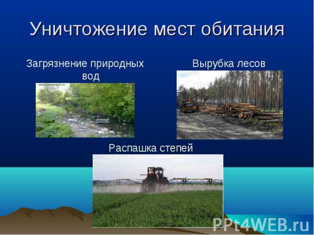 Уничтожение мест обитания