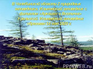 В Челябинской области 2 природных заповедника. Ильменский заповедник с филиалом