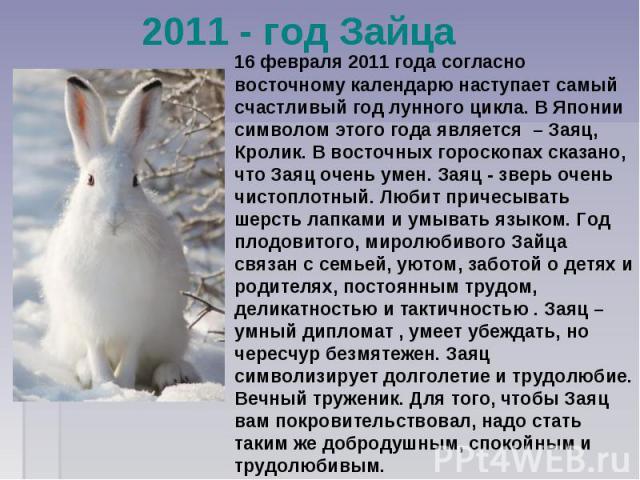 2011 - год Зайца 16 февраля 2011 года согласно восточному календарю наступает самый счастливый год лунного цикла. В Японии символом этого года является – Заяц, Кролик. В восточных гороскопах сказано, что Заяц очень умен. Заяц - зверь очень чистоплот…