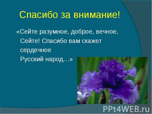 Спасибо за внимание! «Сейте разумное, доброе, вечное, Сейте! Спасибо вам скажет сердечное Русский народ…» Н.Некрасов
