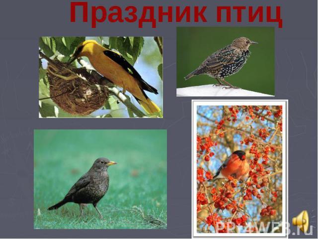 Праздник птиц