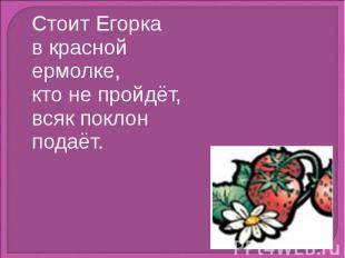 Стоит Егоркав красной ермолке,кто не пройдёт,всяк поклон подаёт.