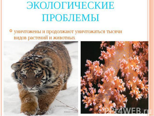 Экологические проблемы уничтожены и продолжают уничтожаться тысячи видов растений и животных