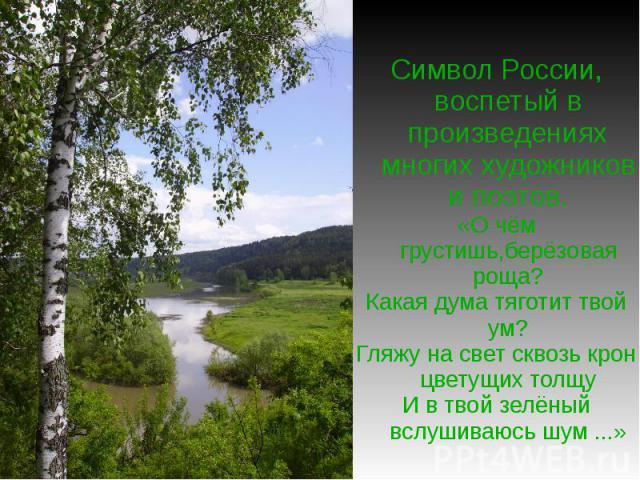Символ России, воспетый в произведениях многих художников и поэтов.«О чём грустишь,берёзовая роща?Какая дума тяготит твой ум?Гляжу на свет сквозь крон цветущих толщуИ в твой зелёный вслушиваюсь шум ...»