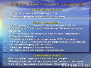 Этапы проведения проекта Подготовительный этапСоставление плана работы над проек