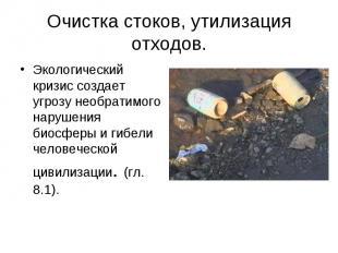 Очистка стоков, утилизация отходов. Экологический кризис создает угрозу необрати
