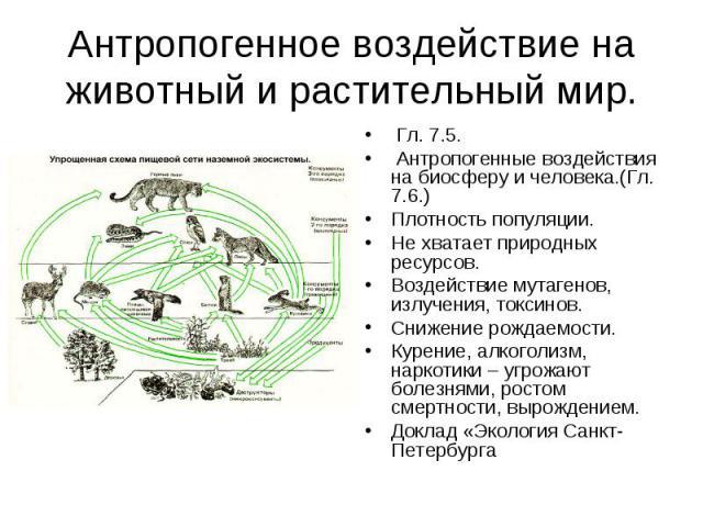 Антропогенное воздействие на животный и растительный мир. Гл. 7.5. Антропогенные воздействия на биосферу и человека.(Гл. 7.6.)Плотность популяции.Не хватает природных ресурсов.Воздействие мутагенов, излучения, токсинов.Снижение рождаемости.Курение, …