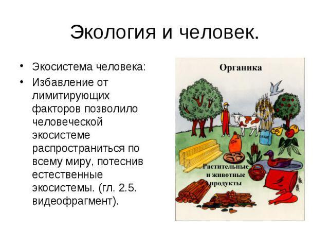 Экология и человек. Экосистема человека:Избавление от лимитирующих факторов позволило человеческой экосистеме распространиться по всему миру, потеснив естественные экосистемы. (гл. 2.5. видеофрагмент).