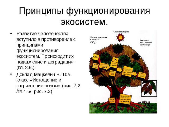 Принципы функционирования экосистем. Развитие человечества вступило в противоречие с принципами функционирования экосистем. Происходит их подавление и деградация. (гл. 3.6.)Доклад Мацкевич В. 10а класс «Истощение и загрязнение почвы» (рис. 7.2 /гл.4…