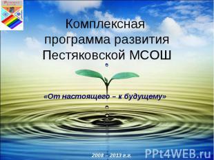 Комплексная программа развитияПестяковской МСОШ
