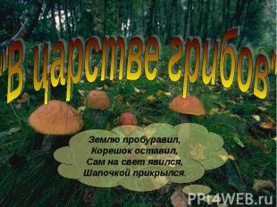 """""""В царстве грибов"""" Землю пробуравил,Корешок оставил,Сам на свет явился,Шапочкой"""