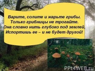 Варите, солите и жарьте грибы.Только грибницы не трогайте.Она словно нить глубок