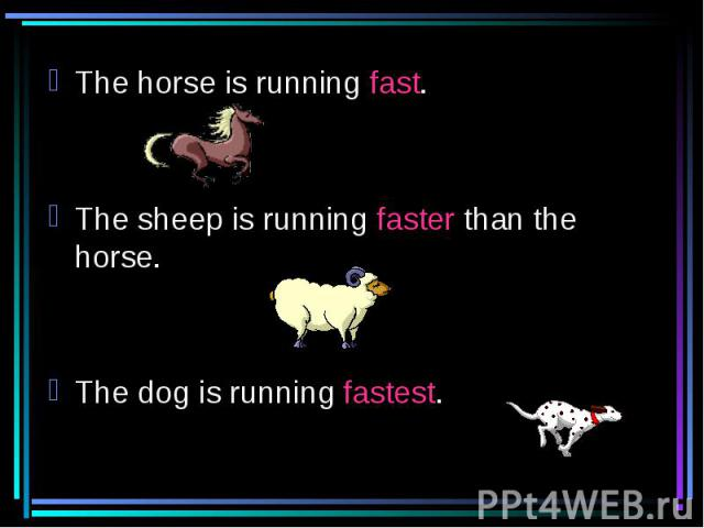 The horse is running fast.The sheep is running faster than the horse.The dog is running fastest.