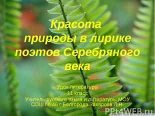 Красота природы в лирике поэтов Серебряного века Урок литературы11 классУчитель