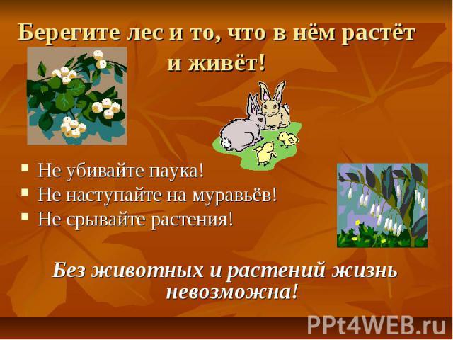 Берегите лес и то, что в нём растёт и живёт! Не убивайте паука!Не наступайте на муравьёв!Не срывайте растения!Без животных и растений жизнь невозможна!