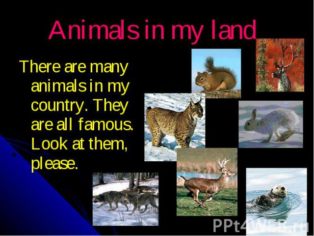 Animals in my land There are many animals in my country. They are all famous. Look at them, please.