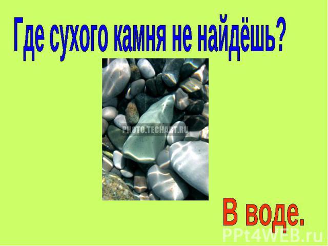 Где сухого камня не найдёшь? В воде.