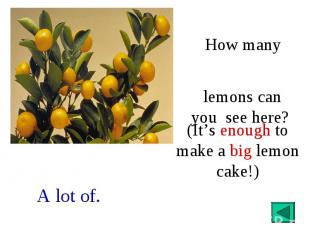 How many lemons can you see here?(It's enough to make a big lemon cake!)