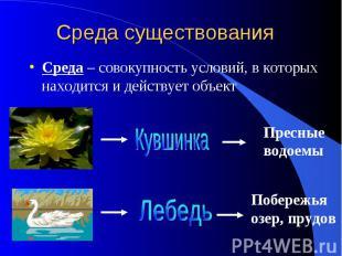 Среда существования Среда – совокупность условий, в которых находится и действуе