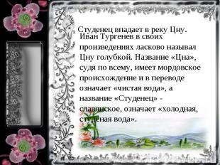 Иван Тургенев в своих произведениях ласково называл Цну голубкой. Название «Цна»