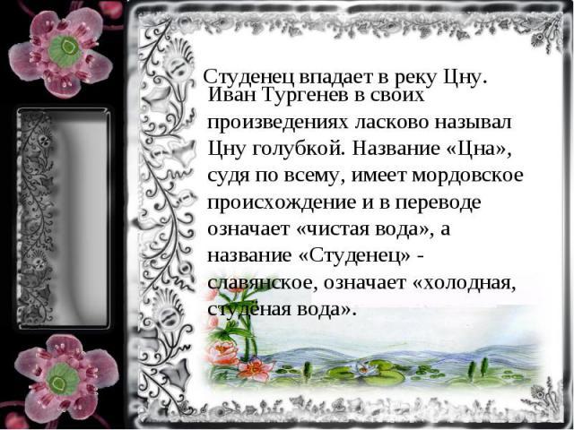 Иван Тургенев в своих произведениях ласково называл Цну голубкой. Название «Цна», судя по всему, имеет мордовское происхождение и в переводе означает «чистая вода», а название «Студенец» - славянское, означает «холодная, студёная вода».